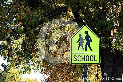 De Kruising van de school