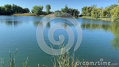 De Lachine Rapids, Saint Lawrence River stock footage