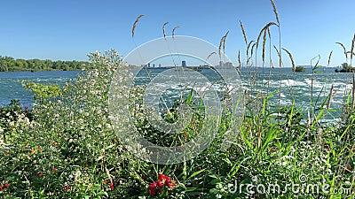 De Lachine Rapids, Saint Lawrence River stock videobeelden