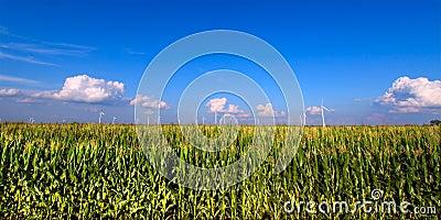 De landbouwgrond van Illinois