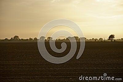 De Landbouwgronden van Illinois
