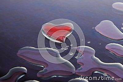 De Liefde van het water