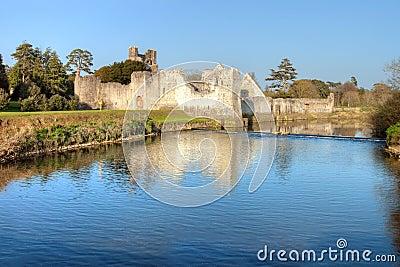 De Limerick van Co. van het Kasteel van Adare - Ierland.
