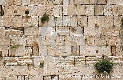 De loeiende muur van Jeruzalem - close-up