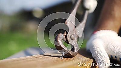 De mens in werkende handschoenen trekt de gehamerde spijker in openlucht terug van hout door roestige spijkertrekker, met de hand stock video