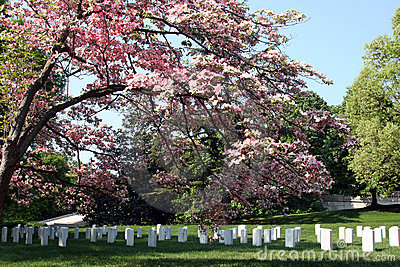 De Nationale Begraafplaats van Arlington