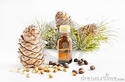 De noten en de olie van de ceder