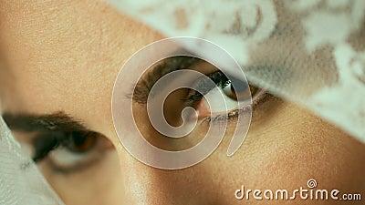 De ogen van de sluier