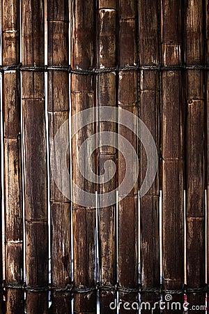De omheining van het bamboe