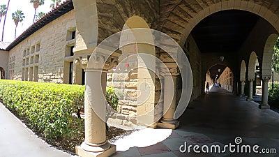 De overwelfde galerij Palo Alto van Stanford stock footage