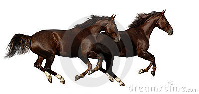 De paardengalop van Budenny