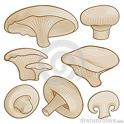 De paddestoelen van de houtdruk