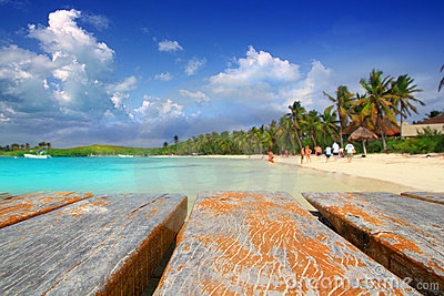 De palm treesl Caraïbisch strand Mexico van het Eiland van Contoy