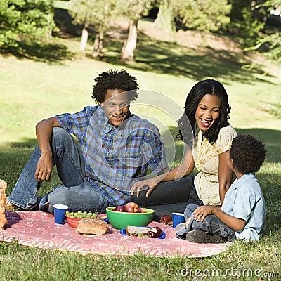 De picknick van de familie.