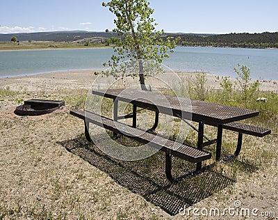 De picknicklijst van het park