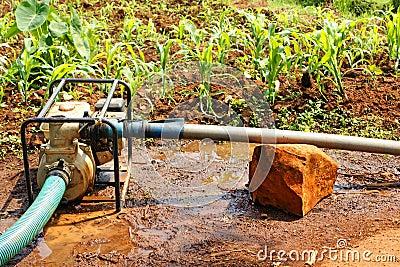 De pomp van het water op het gebied tijdens droog seizoen