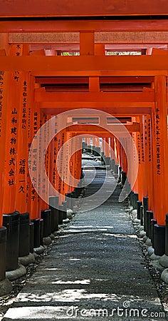 De poorten van de Torussen van Kyoto