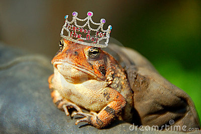 De Prinses van de kikker