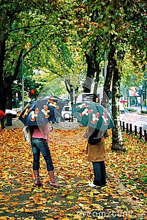 De regen van de herfst