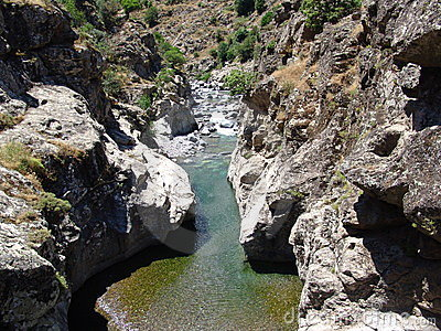 De rivier Asco in Corsica
