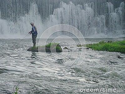 De rivier van de wortel visserij