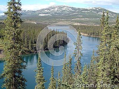 De rivier van Yukon