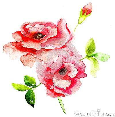 De rode bloemen van Rozen