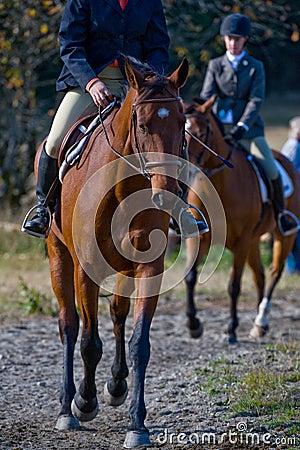 De ruiters van het paard in platteland