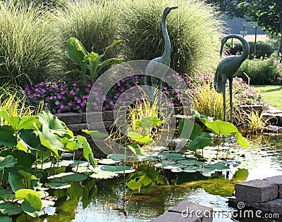 De rustige tuin van de vijver royalty vrije stock foto afbeelding 2664585 - Foto van tuin vijver ...