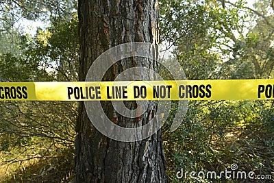 De scène van de misdaad in het bos