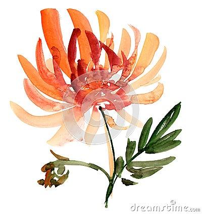 De schets van de bloem