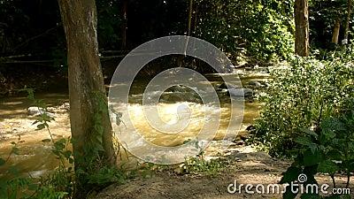 De schoonheid van de Paniki-rivier die in het regenachtige seizoen stroomt stock video