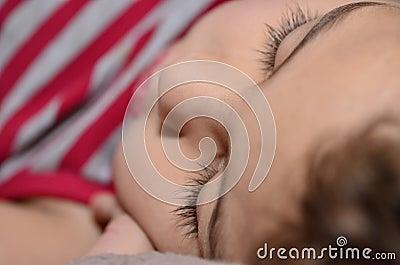 De slaapsnoepje van het jonge geitje