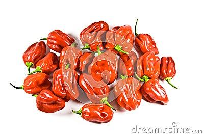De Spaanse pepers van Naga