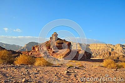 Spiraalvormige Heuvel