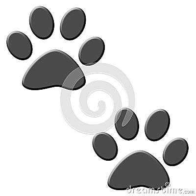 De sporen van de kat