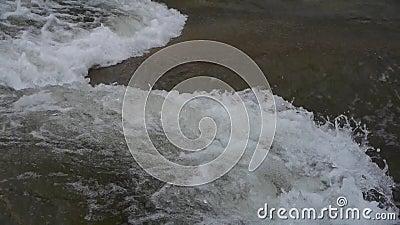 De stroominhammen van de stroomversnellingrivier op keien stock videobeelden