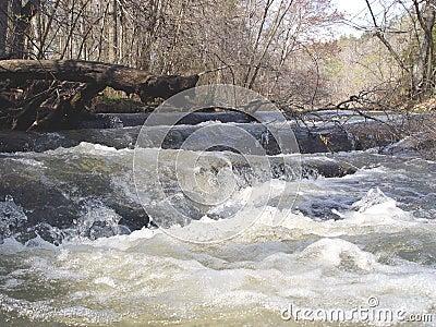 De Stroomversnelling van de rivier