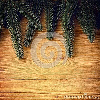 De takken van de spar op hout