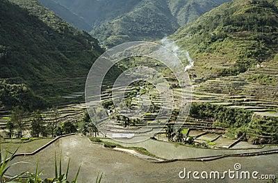 De terrassen banaue luzon filippijnen van de rijst stock afbeeldingen beeld 27727344 - Afbeeldingen van terrassen verwachten ...