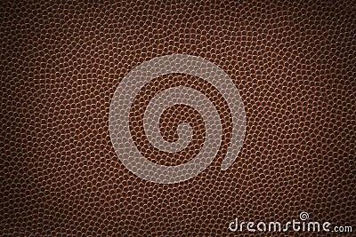 De Textuur van Fotball