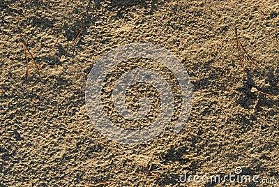 De textuur van het zand