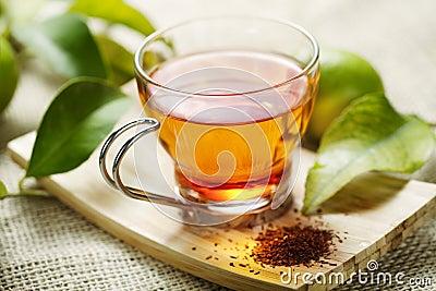 De thee van Rooibos