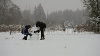 De Tijdspanne van de sneeuwmantijd stock video