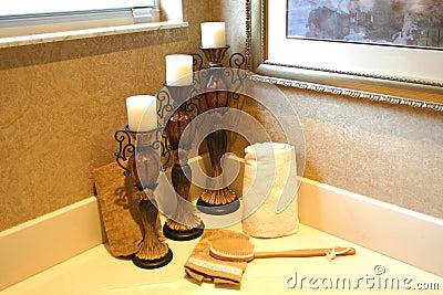 De Toebehoren van de badkamers