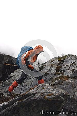 De trekking van Himalayan