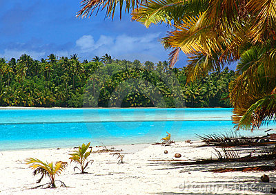 De tropische Scène van het Strand