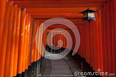 De tunnel van de poort bij het Heiligdom van Fushimi Inari - Kyoto, Japan