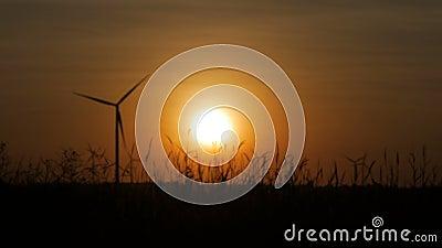 De vaag turbine van de silhouetwind en grasgebied met schemering stock videobeelden