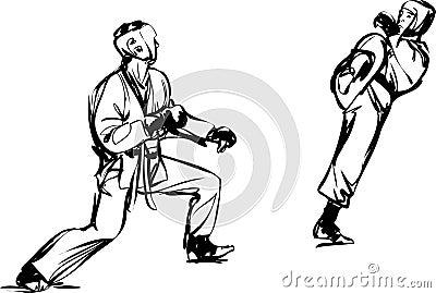 De vechtsportensporten van Kyokushinkai van de karate